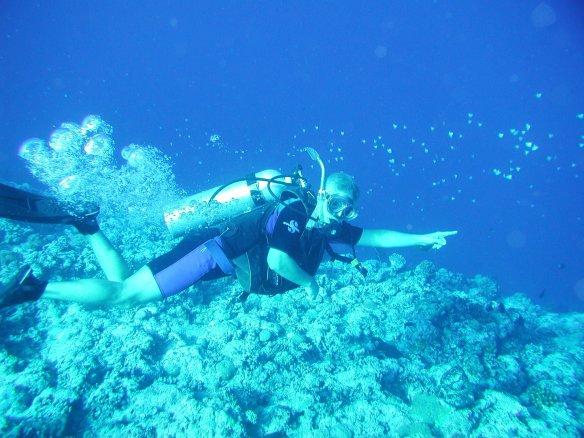 Blue Corner, Palau !